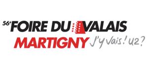 logo_fvs
